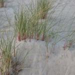 Entspannungsurlaub Ostsee
